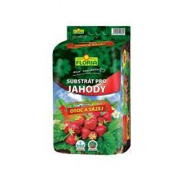 Agro Floria jahody 40 l