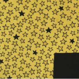 Softshell zimný Looking at the stars yellow
