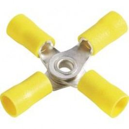 Krížové oko Vogt Verbindungstechnik 3655a4 3655a4, průřez 6 mm², průměr otvoru 4 mm, čiastočne izolované, žltá, 1 ks